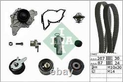 INA Water Pump & Timing Belt Set 530053930 Fits AUDI